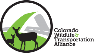 COLORADO WILDLIFE & TRANSPORTATION ALLIANCE